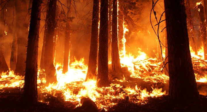 Authoritative Prayer for Fire